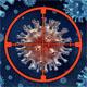 感染超级耐药菌 停用抗生素竟轻松打败