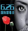 国际禁毒日:无毒青春 健康生活